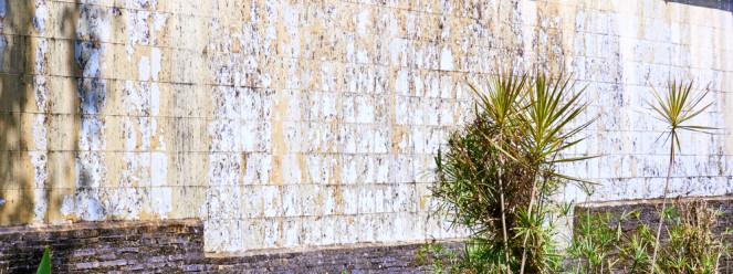 Infiltração na parede